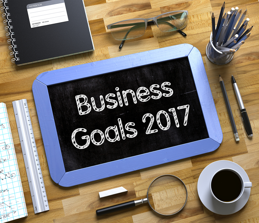 Business Goals for 2017