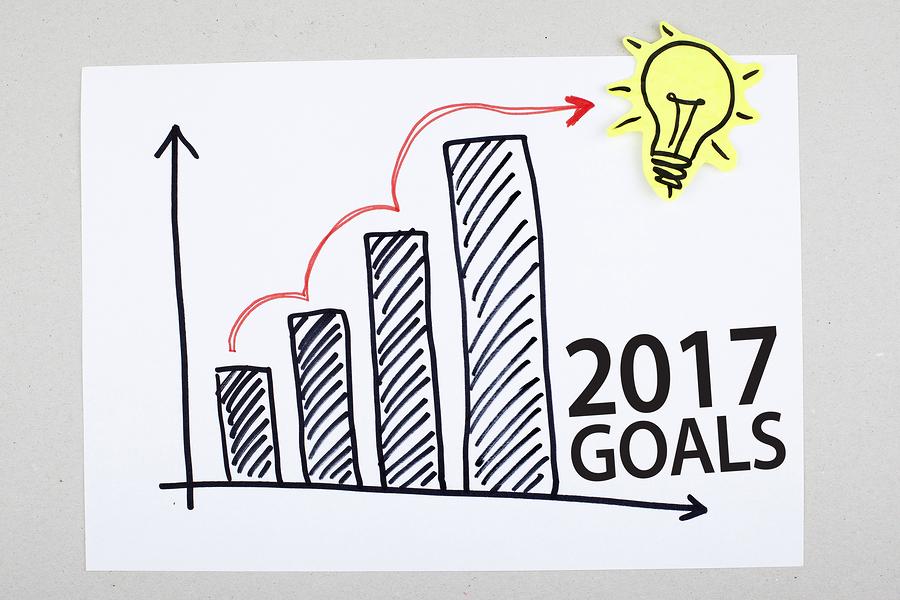 2017 goals success